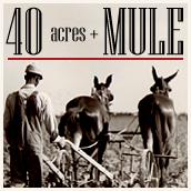 40acres_Mule_1